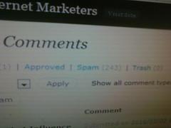 Blog Comment Spam