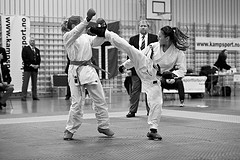 Karate Norgesmesterskap 2010