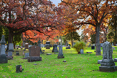 Fall scene in Forest Hills Cemetary, Madison, WI, October, 2011