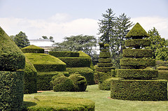 Longwood Gardens - Manicured Garden